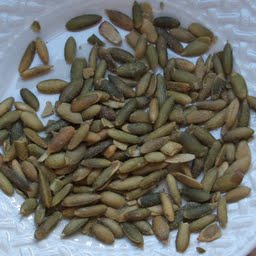 pumpkin-and-squash-seed-kernels